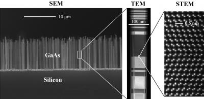 Nanowire crystals are used as the solar cells. The image (left) shows a SEM (Scaning Electron Microscope) image of GaAs nanowire crystal grown on a Silicon substrate. A TEM (Transmission Electron Microscope) image (middle) shows a single nanowire. Further zooming in on the crystal structure, using STEM (Scanning Transmission Electron Microscope) imaging, shows the actual atomic columns (right). Credit:  Niels Bohr Institute