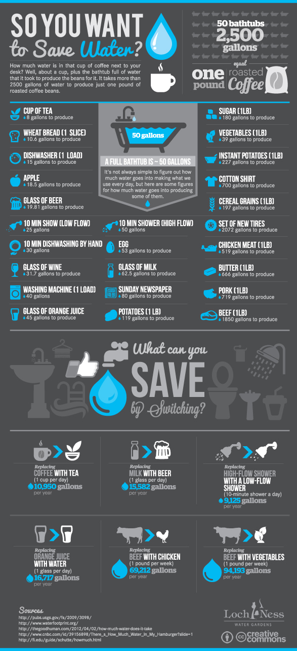 Water Usage Infographic