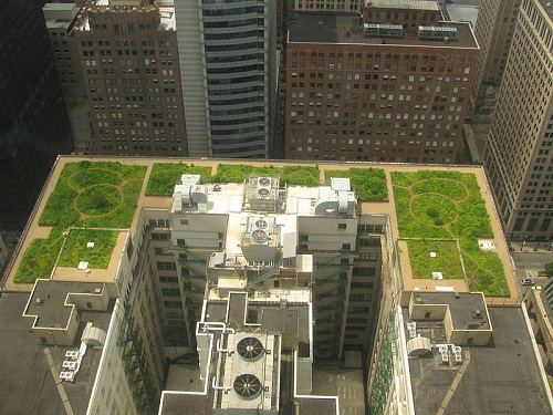Green roof 800px-20080708_Chicago_City_Hall_Green_Roof -500