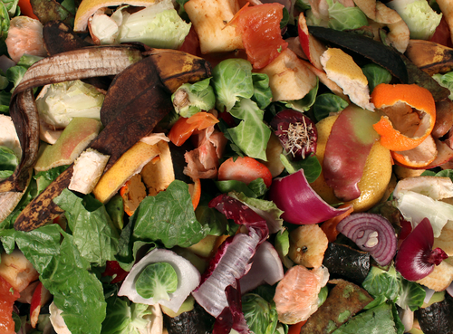 Composting Pile of rotting fruits shutterstock_124993205