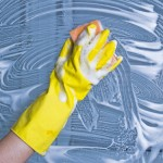 Rats exposed to chemicals called glycol ethers, common solvents in paints, cleaning products and cosmetics experienced shrunken testicles. Photo courtesy of Shutterstock