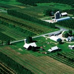 This Michigan farm uses a mix of orchards and field crops. Such diverse farm landscapes are good for the environment and rural economies. Photo credit: Union of Concerned Scientists