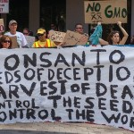 Protesters rally against Monsanto in Orlando, FL in May. Photo courtesy of Shutterstock