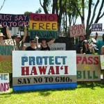 Photo credit: GMO Free Hawaii Island