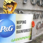 A month after Greenpeace protested at P&G's headquarters, the company has announced a no-deforestation policy. Photo credit: Jimmy Domingo/Greenpeace