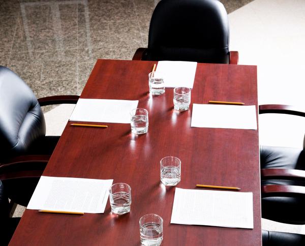 Board of Directors hire